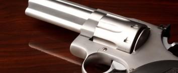 Gun Crimes in New York