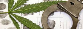 Marijuana Attorneys