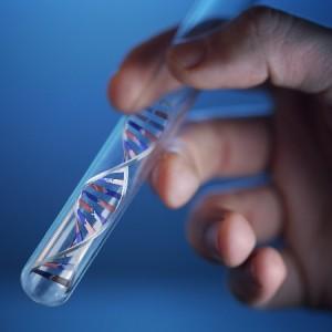 DNA Error test