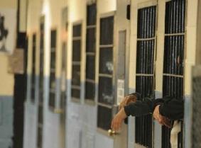 NY Defendants
