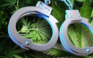 New Stats Violent Crime, Drug Use, Marijuana Arrests