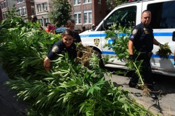 The Surest Way To Face Pot Charges In New York City